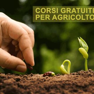 CORSI AGRICOLTURA GRATUITI PROGRAMMA PSR REGIONE MARCHE